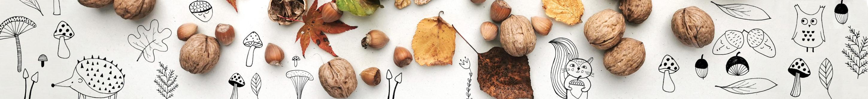 disi_po_jeseni_ilustracija